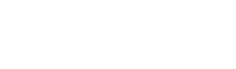 Logo VSB Wellness